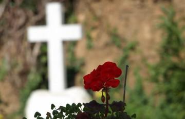 flor tumba